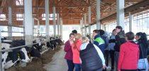 Obisk družinske kmetije Hajšek